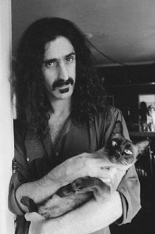 Frank+Zappa+Zappa+and+cat