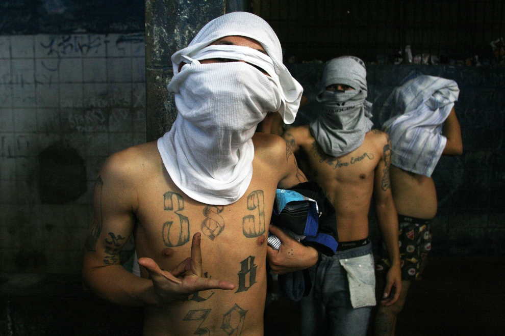 mexican_cartel